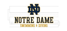 Wordmark Notre Dame Two Color Long